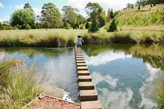The Tasmanian Arboretum is a botanical tree park near Devonport, Tasmania, Australia.