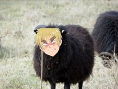 Hetalia where it shouldn't be: Arthur Kirkland in his natural habitat<<< OMG what am I looking at