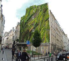 10 Vertical Gardens That Bring Greenery to Boring Walls