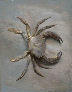 Art by John Ruskin Cancer Zodiac Art | Astrology | Cancer the Crab | Moon Child ♋ Cancer ♋ June 22nd - July 22nd ☪