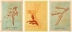 Thomas Schütte, Fucking Flowers I, II, III