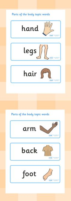 Twinkl Resources >> Parts of the Body Topic Words >> Classroom printables for Pre-School, Kindergarten, Elementary School and beyond! Topics, Ourselves, Human Body, Word Cards