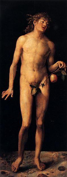 """""""Adam"""" -- 1507 -- Albrecht Dürer -- German -- Oil on panel -- Museo Del Prado, Madrid Hans Holbein, Albrecht Durer, Hans Baldung Grien, Hans Thoma, Adam Et Eve, Carl Spitzweg, High Renaissance, Hieronymus Bosch, Classical Art"""