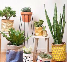 Planten op een standaard