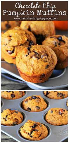 Chocolate Chip Pumpkin Muffins {a. 'Puffins'} Chocolate Chip Pumpkin Muffins ~ Moist, tender, & deliciously loaded with chocolate chips. Dessert Simple, Pavlova, Matcha, Dessert Design, Best Pumpkin Muffins, Pumpkin Pancakes, Pumpkin Soup, Pumpkin Spice, Tiramisu