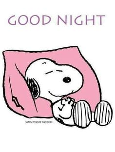 Good Night - Snoopy Sleeping On A Pillow Peanuts Gang, Peanuts Cartoon, Charlie Brown And Snoopy, Good Night Snoopy, Good Night Sleep, Funny Good Night Quotes, Goodnight Quotes Funny, Goodnight Post, Humorous Quotes