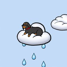 New party member! Tags: cute dog kawaii rain pastel cloud pale goodnight good night raining pup dachshund sweet dreams pastels baby blue nap time doxie stefanie shank stef shank house of joy pastel blue pale blue cloud emoji cloud pup