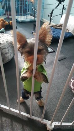 HELP ME!!!.....Oh my goodness the torture. It's crime 2 b locked up in such luxury.