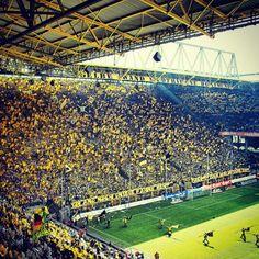 BVB fans at Westfalenstadion.