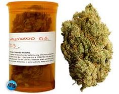 Get your Salinas medical marijuana, marina medical marijuana delivered at your doorstep, we have a wide variety of edible to choose from cannafreedom.org