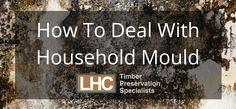 How To Deal With Household Mould London Home Counties
