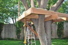 How to build a tree house - inspiration