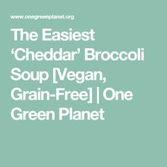 The Easiest 'Cheddar' Broccoli Soup [Vegan, Grain-Free] | One Green Planet