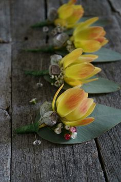 Leucadendron boutonniere by RANE flowers