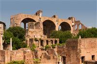 Basilica of Maxentius and Constantine