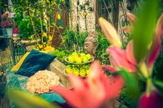 Bed And Breakfast, Event Design, Bohemian Style, Boutique, Fruit, Travel, Viajes, Destinations, Traveling