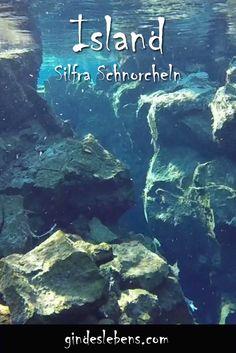 Schnorcheln zwischen zwei Kontinenten in der Silfra Spalte - island