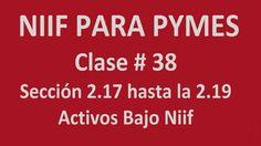 695. Sección 2.17 a 2.19 Activo Bajo Niif (Clase 38 ) _ Niif Para Pymes