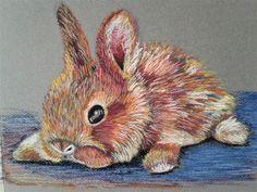 Pastel Drawing, Drawing S, Rabbit Drawing, Bunny Rabbit, Wallpaper S, Psychedelic, Surrealism, Mushroom, Watercolor Paintings