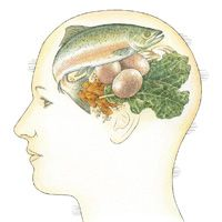 Six Brain Foods for Better Running