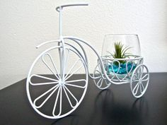 Live and Growing! Tricycle Air Plant Planter by eGardenStudio, $36.50