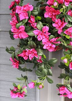 Pretty artificial hanging basket of wild flowers garden water resistant outdoor fake flowers azalea hanging bush in cerise fuchsia long mightylinksfo