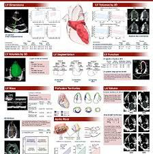 Resultado de imagem para rotation angle from 4 chamber to 2 chamber view in echocardiography Heart Echo, Medical Students, Ultrasound, Angles, Echo Echo, Heart Health, Labs, Nursing, Study