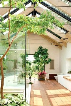 Bright bathroom with plants and skylights.