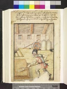 1584 Man in an attic turning cereal grains. Shovels, grain bags, rats looking for food  Die Hausbücher der Nürnberger Zwölfbrüderstiftungen