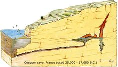 cosquer cave seal drawings - Google Search