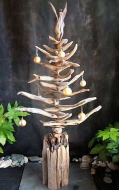 arbre de bois en sapin