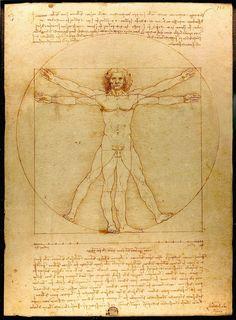 El hombre de Vitruvio - Leonardo da Vinci