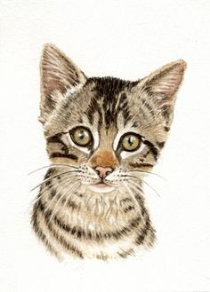 Watercolor Cats | Art Painting Cats Tabby 5x8 Print from Original Watercolor Painting by ...