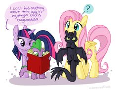 Fluttershy and Toothless