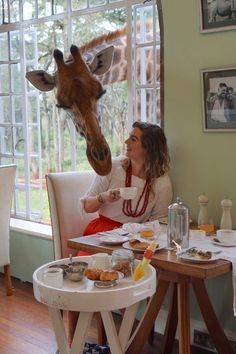 Giraffe Manor in Nairobi, Kenya And So The Adventure Begins, Adventure Is Out There, Oh The Places You'll Go, Places To Travel, Kenya Nairobi, Animal Experiences, Around The World In 80 Days, Best Travel Guides, Puzzle Art
