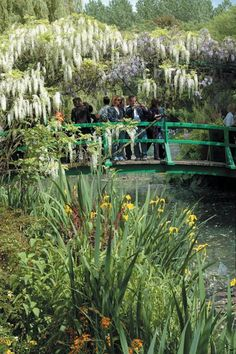 See what inspired one of the world's most beloved paintings by visiting Monet's garden in Paris.