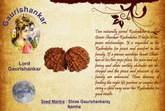 Benefits of GauriShankar Rudraksha: God: Lord Gaurishankar Two naturally joined Rudraksha is called Gauri Shankar Rudraksha.It helps to improve relationships. It is regarded as the Rudraksha for peace and comfort in the family. If a person worships Gauri Shankar at his/her puja place, the pain and suffering and other earthly obstacles are destroyed and the peace and pleasure of the family are enhanced.  http://www.rudralife.com/Rudraksha/details.php?id=48