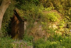 The shed from an English Country garden.   Nicely blended with its surroundings.  Looks like its meant to be there