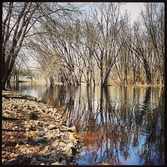 Wolf River, Spring 2013, New London,  WI. Looking for Sturgeon, none spotted today, maybe later in week when it warms up. #river #scenic #wisconsin #cy365 #fmsphotoaday #bestoftheday #bluesky #dailyshots #picoftheday #photoaday #instagram