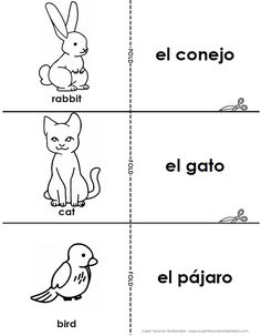 Super Teacher Worksheets now has Spanish!  Check out these flashcards with the Spanish words for types of pets.  Visit our Spanish Worksheets page for the entire collection of flashcards, maps, and reading comprehension passages.