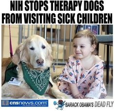 and they are all VOLUNTEERS who cost NOTHING to cheer up little sick children. What a guy.... http://cnsnews.com/news/article/penny-starr/nih-stops-therapy-dogs-visiting-sick-children#sthash.ZnSYdrat.dpuf