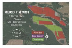 Knudsen Vineyards