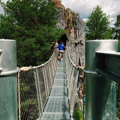 Opening back up for the season on May 27th, the incredible Wild Walk offers visitors a way to view New York like they've never seen before.