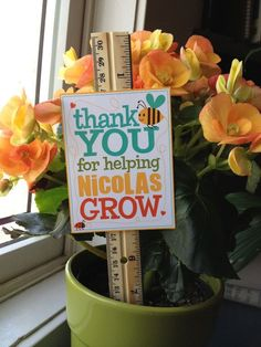 Teacher Appreciation Personalized Grow Sign Printable PDF Daycare Teacher Gifts, Teacher Gift Baskets, Teacher Thank You, School Gifts, Thank You Gifts, Employee Appreciation Gifts, Teacher Appreciation Week, Presents For Teachers, Homemade Gifts