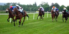 Irl-Sligo horse racing - Ireland - Wikipedia, the free encyclopedia