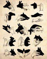 hand shadows...antique print