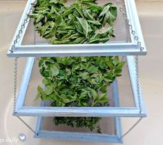 s 25 awesome things you didn t know you could do with old picture frames, crafts, repurposing upcycling, Make an easy herb drying rack