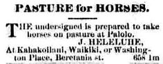 "https://flic.kr/p/MumADX | Horse Pasture | ""Pastures for horses. The undersigned is prepared to take horses on pasture at Palolo. J. Heleluhe, at Kahakoilani, Waikiki, or Washington Place, Beretania st.""  Horse pasture at Palolo ad The Daily bulletin, September 26, 1890, Image 2 chroniclingamerica.loc.gov/lccn/sn82016412/1890-09-26/ed-...  Hawaii Digital Newspaper Project hdnpblog.wordpress.com/"