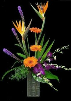 I love this tropical arrangement - liatris, gerbera daisies, birds of paradise, and dendrobium orchids. Contemporary Flower Arrangements, Tropical Flower Arrangements, Creative Flower Arrangements, Church Flower Arrangements, Church Flowers, Beautiful Flower Arrangements, Funeral Flowers, Beautiful Flowers, Ikebana Arrangements