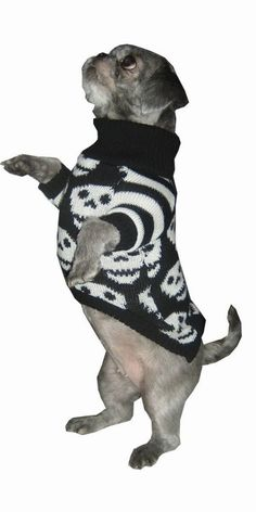 Size Medium Skull Hand knitted Dog by willieratbag on Etsy, $46.00